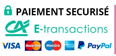 Paiement sécurisé E-transaction et paypal